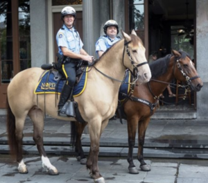 NOPD Mounted Unit